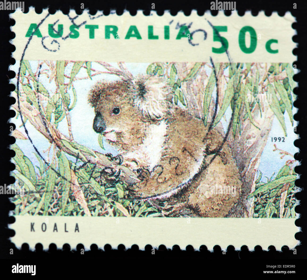 Used and Postmarked,Used,and,postmarked,perforated,Australia,stamp,Used,and,postmarked,Australia,Austrailian,Stamp,post,posting,mail,hobby,perforation,mark,postage,stamp,print,stamp,cancelled,stamp,payment,correspondence,postman,collection,collector,philately,philatelist,lett,Gotonysmith,koala bear,philately,philatelist,letter,arboreal,herbivorous,marsupial,price,history,retro,Australian,Vintage,delivery,date,eucalypt,woodlands,eucalyptus,wood,forest,tree,trees,relationship,communication,Oz,Australia,DownUnder,classic rare unique Austrailian financial,investment,invest,value,British,empire,nation,canceled,printed on black background,close-up,closeup,close,up,sent,send,philately,mailing,shipping,postoffice,office,isolated,circa,special,colour,color,postmarked,marked,airmail,aged,antique,retro,cutting,historic,old,stamps,collection,stamp collection,album,Timbre,Sello,Stempel,Selo,Down Under,Black background