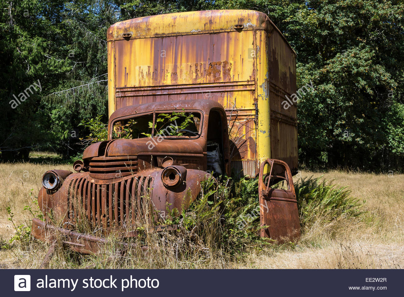 rust-old-rusted-van-in-olympic-national-