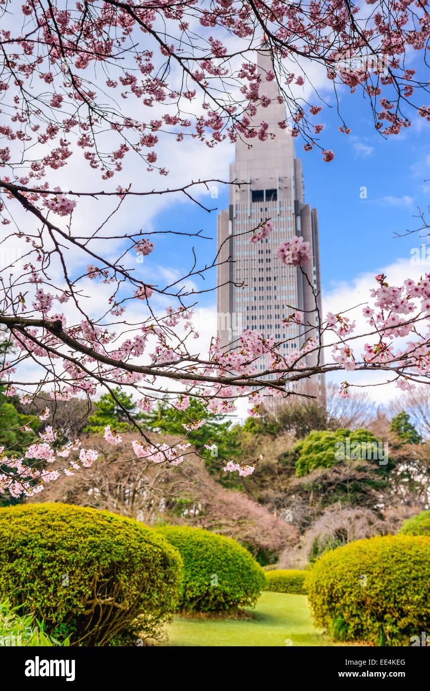 Tokyo, Japan springtime at Shinjuku Gyoen Park. - Stock Image