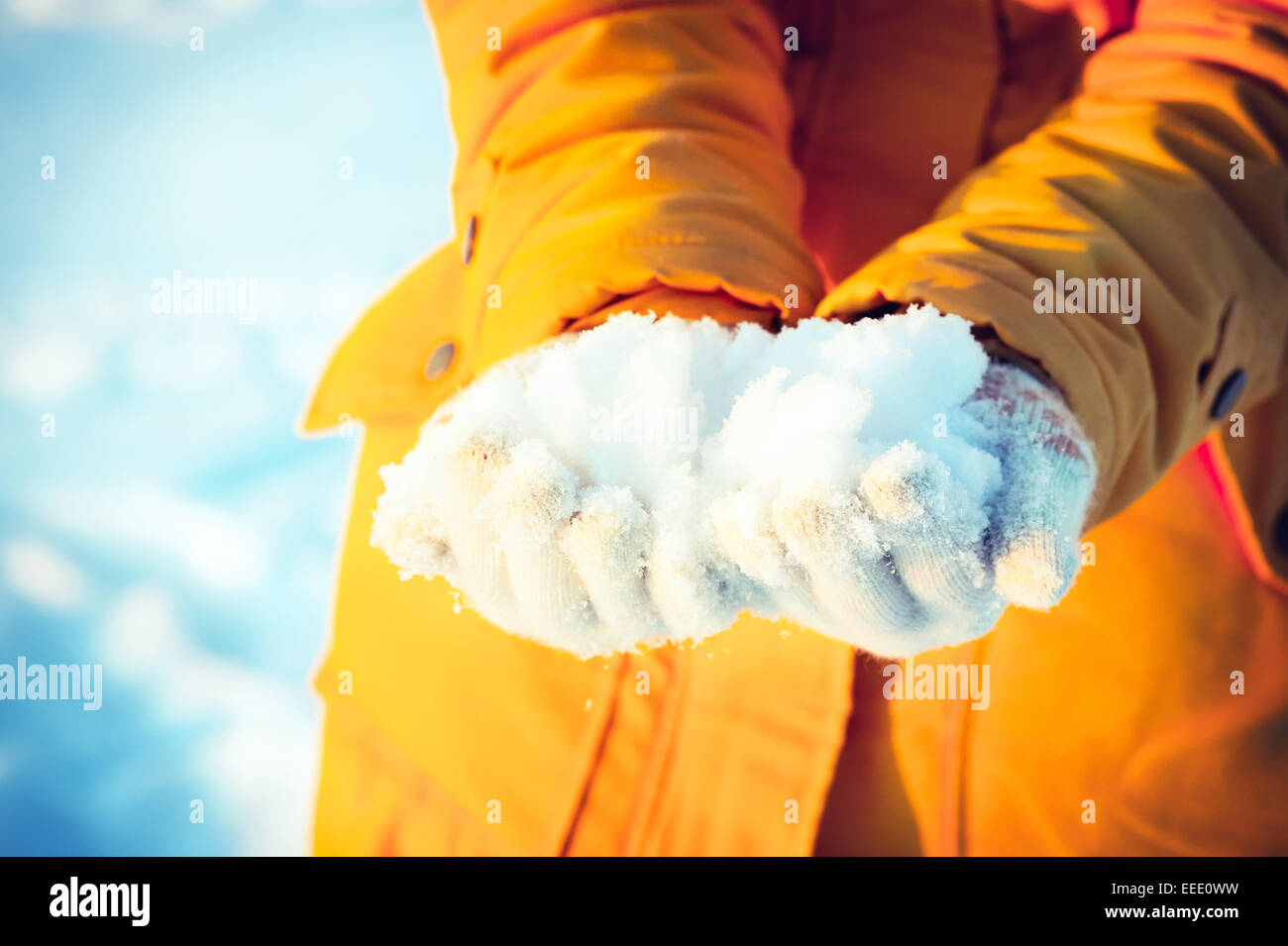 Snow in Woman Hands giving Winter Lifestyle vacations Outdoor - Stock Image