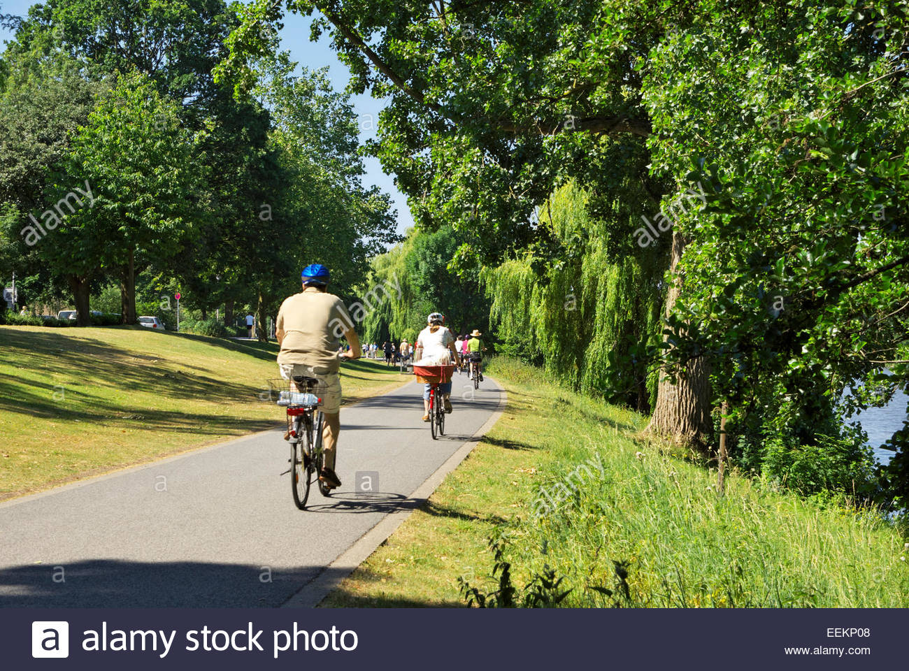 People ride bicycles on a path that runs around the Münstersche Aasee in Münster, Nordrhein-Westfalen, Germany. Stock Photo