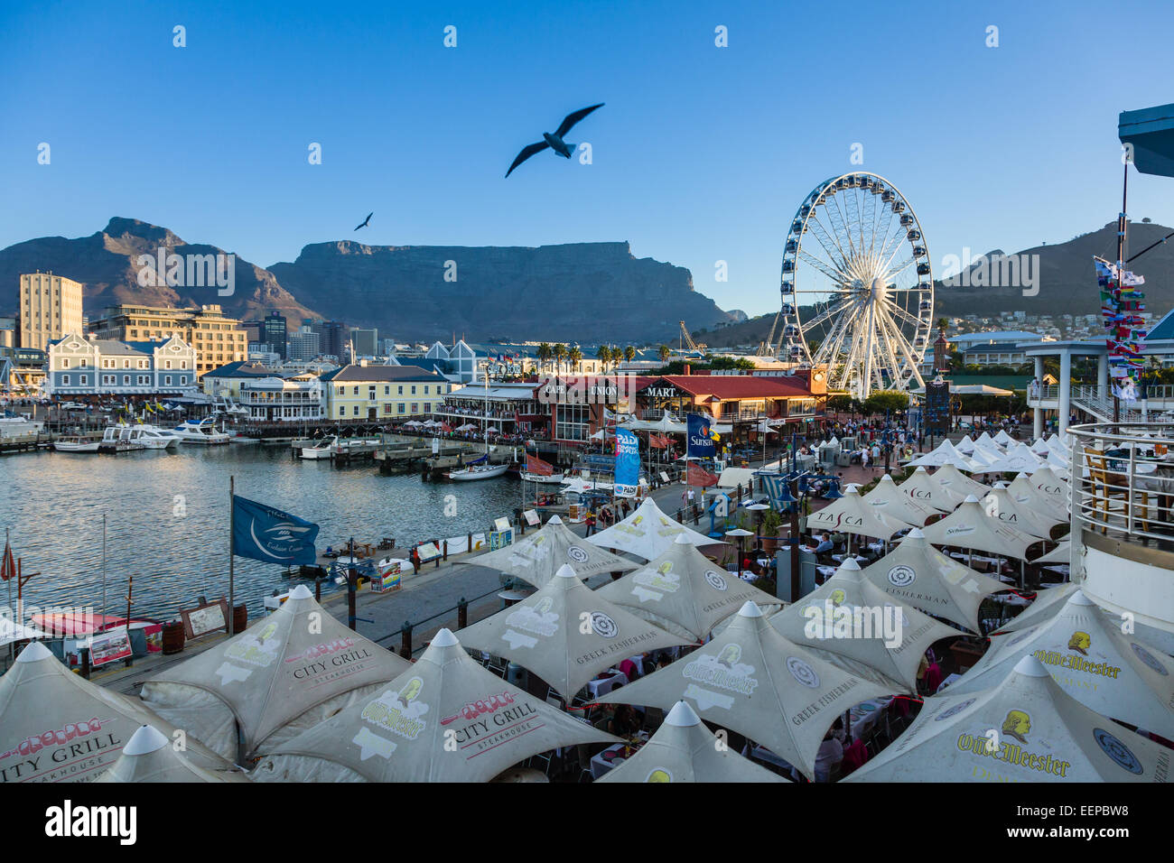 V&A waterfront in Cape Town South Africa. - Stock Image