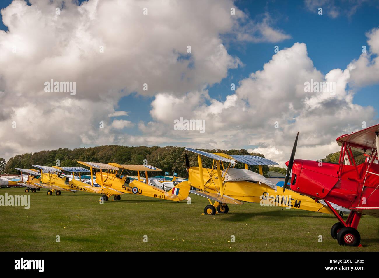 Line of De Havilland Tiger Moths, 1930s biplanes, at Kemble Airshow - Stock Image