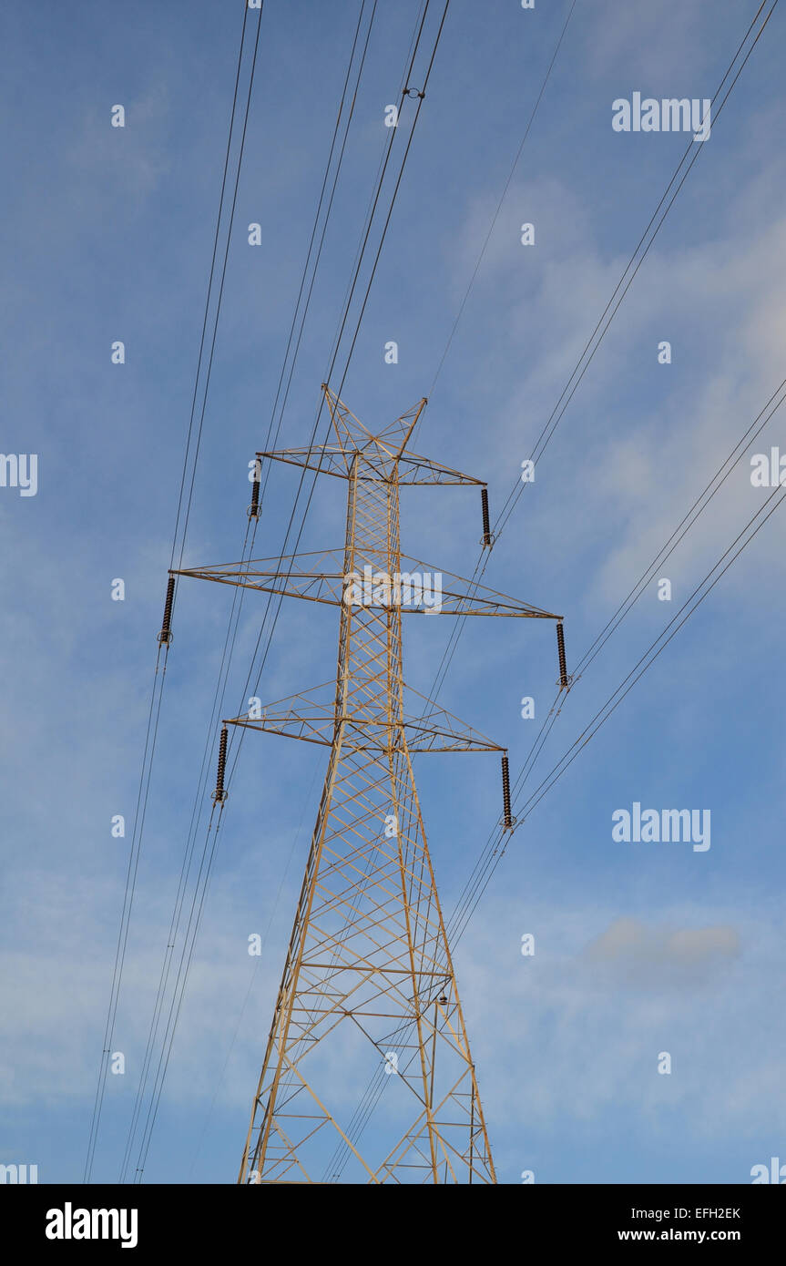 Where can I buy a pylon for home 19