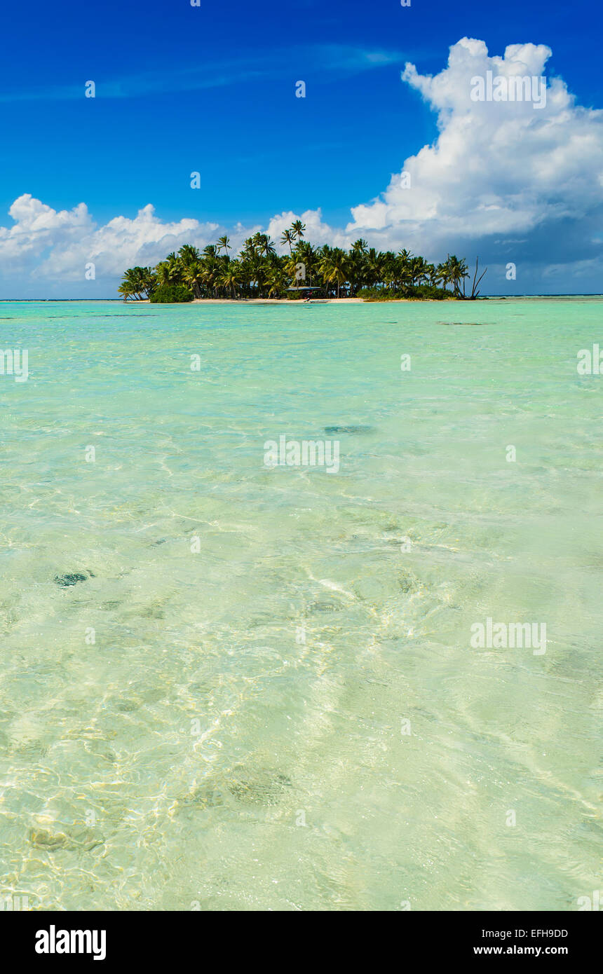 Uninhabited or desert island in the Blue Lagoon inside Rangiroa atoll, an island of the Tahiti archipelago French - Stock Image
