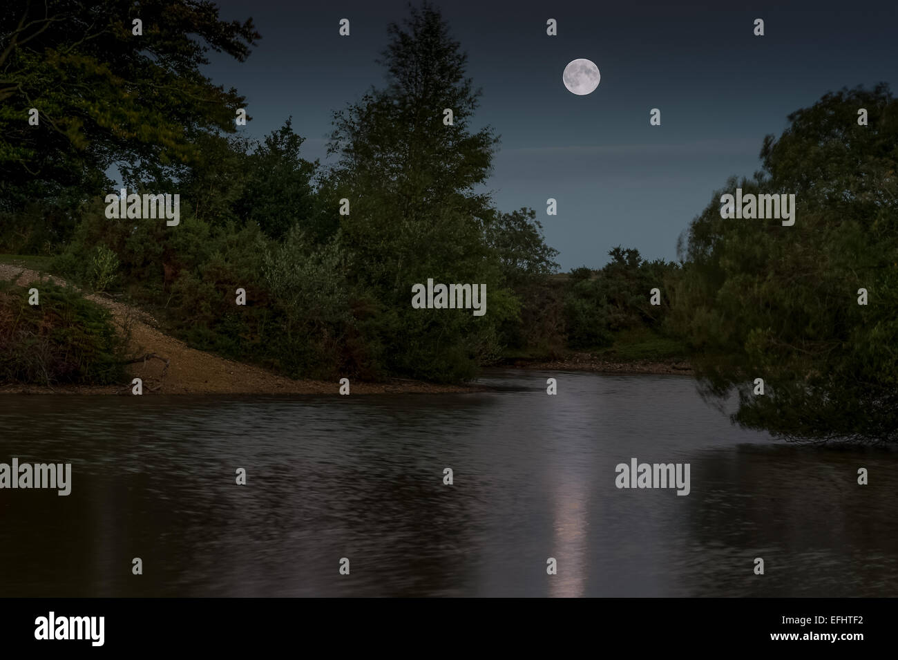 Full Moon Cadnan Pool in the New Forest Stock Photo