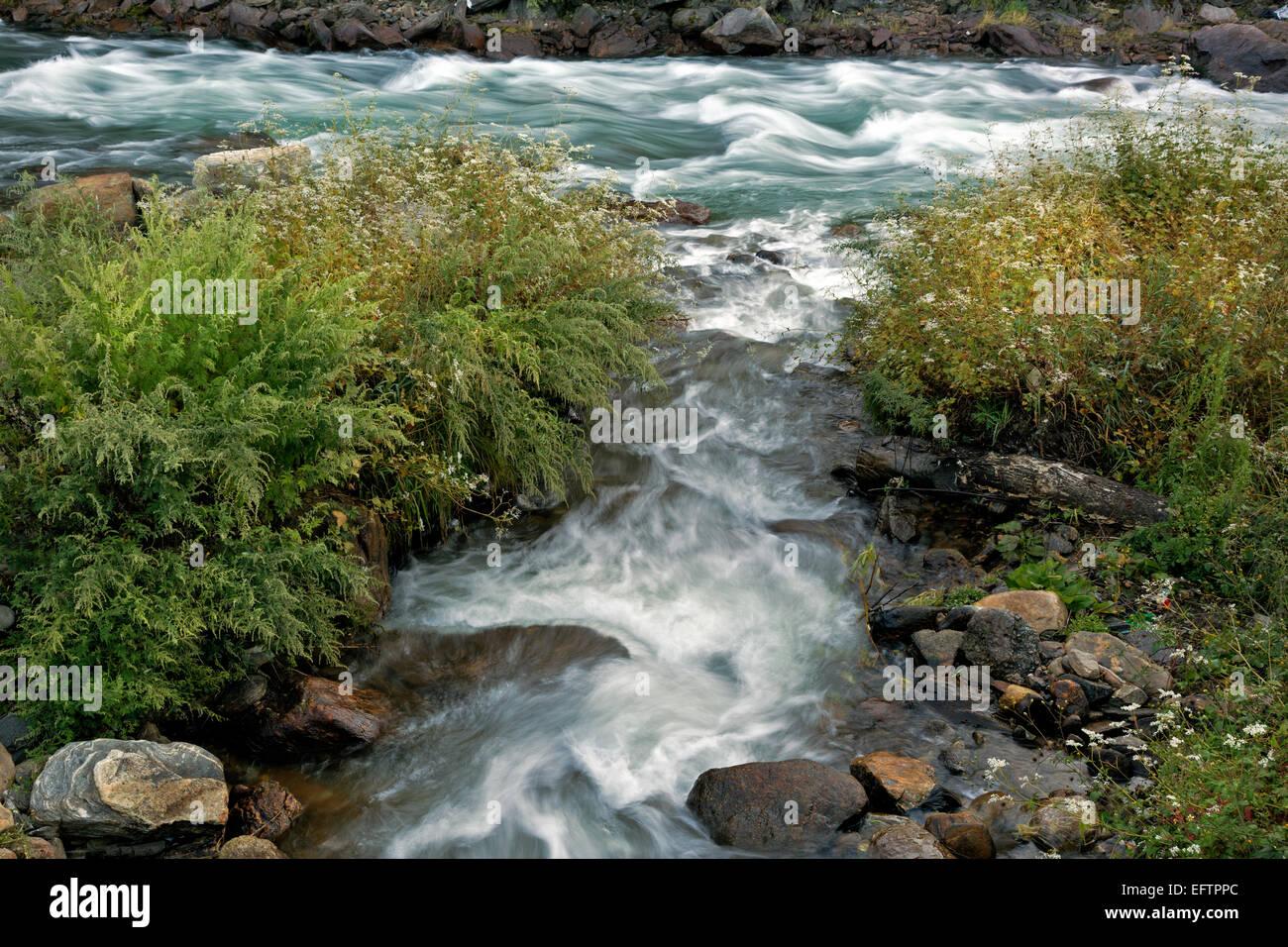 BU00084-00...BHUTAN - Side steam joins the Wang Chhu (river) in the capital city of Thimphu. - Stock Image
