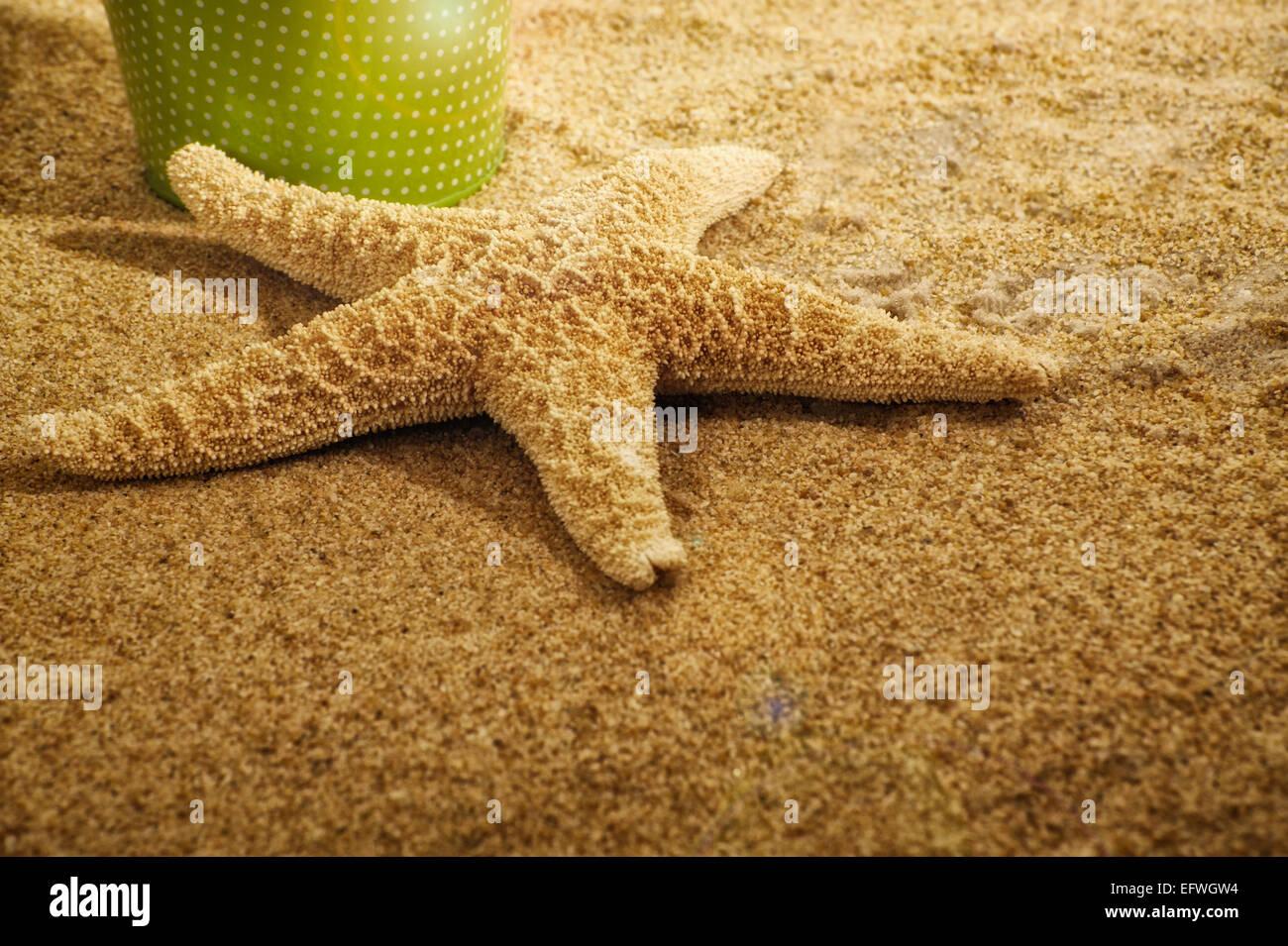 vintage-green-tin-bucket-white-polka-dots-sandy-beach-sea-star-starfish-EFWGW4.jpg
