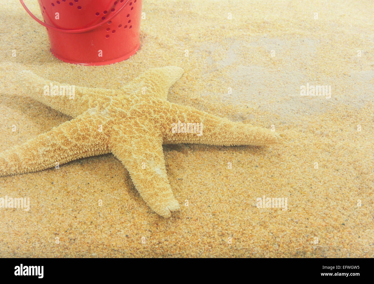 vintage-red-tin-bucket-star-shaped-cutouts-sandy-beach-starfish-summer-EFWGW5.jpg