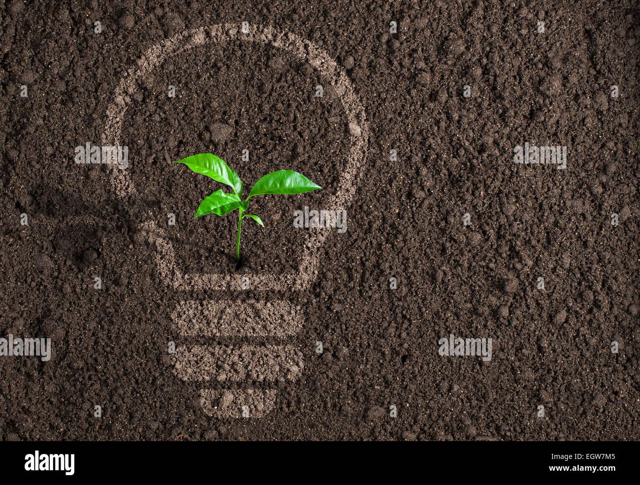Green plant in light bulb silhouette on soil background - Stock Image