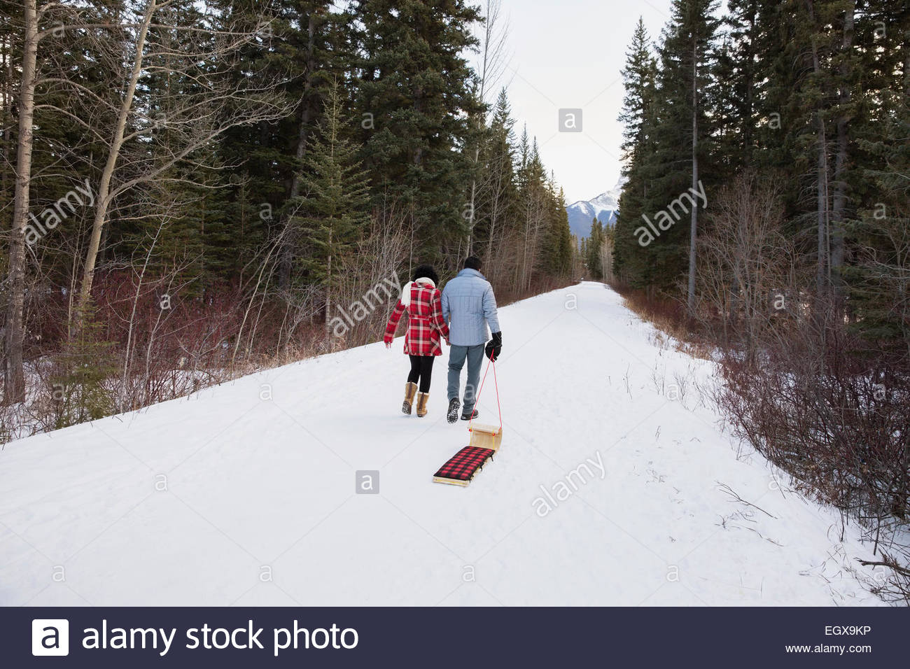 Couple pulling sled down snowy lane in woods - Stock Image