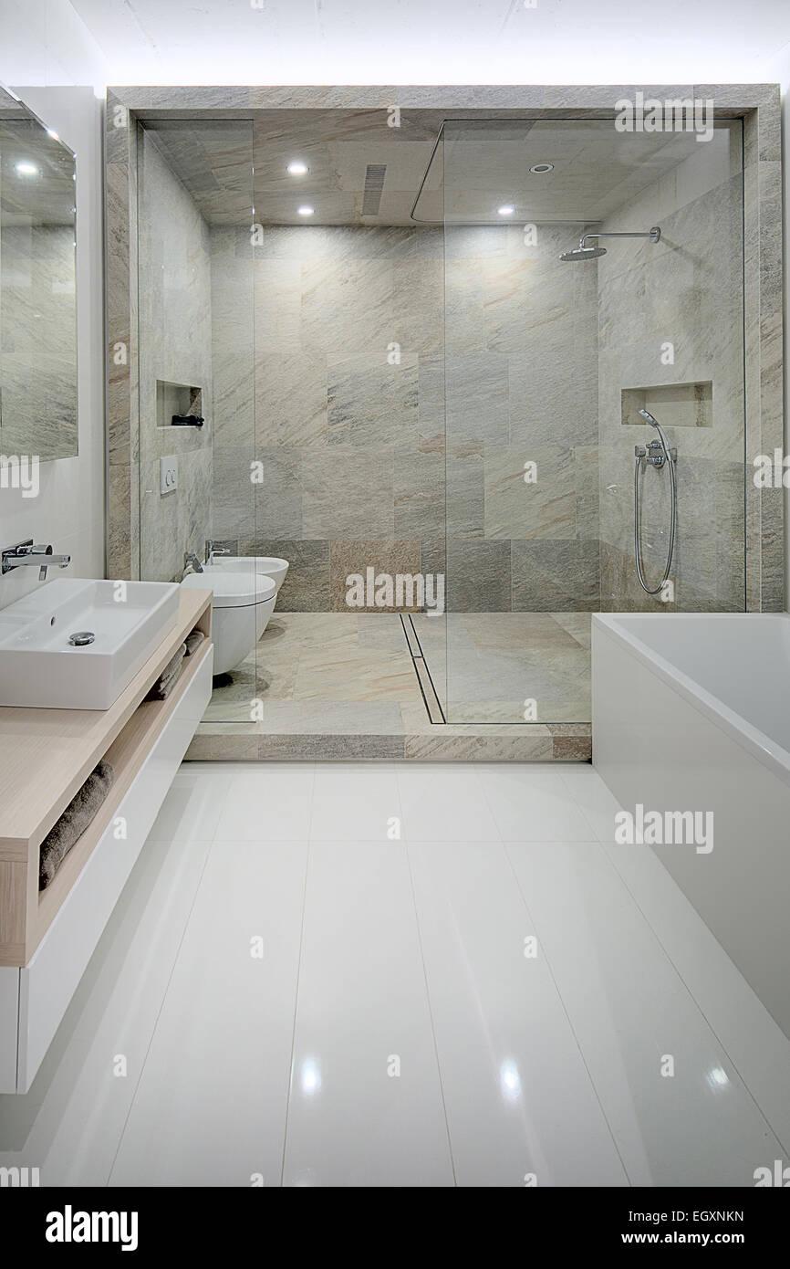 Bathroom in a modern loft style. Sink, toilet, bidet, shower Stock ...