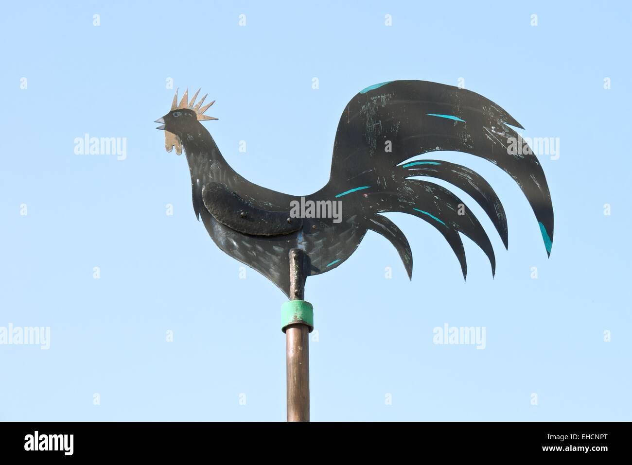Wetterhahn , Metal rooster - Stock Image