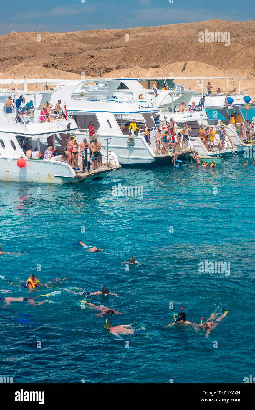 Tourists snorkel around coral reefs in the Red Sea, just off the shores of Hurghada, in Egypt - Stock Image