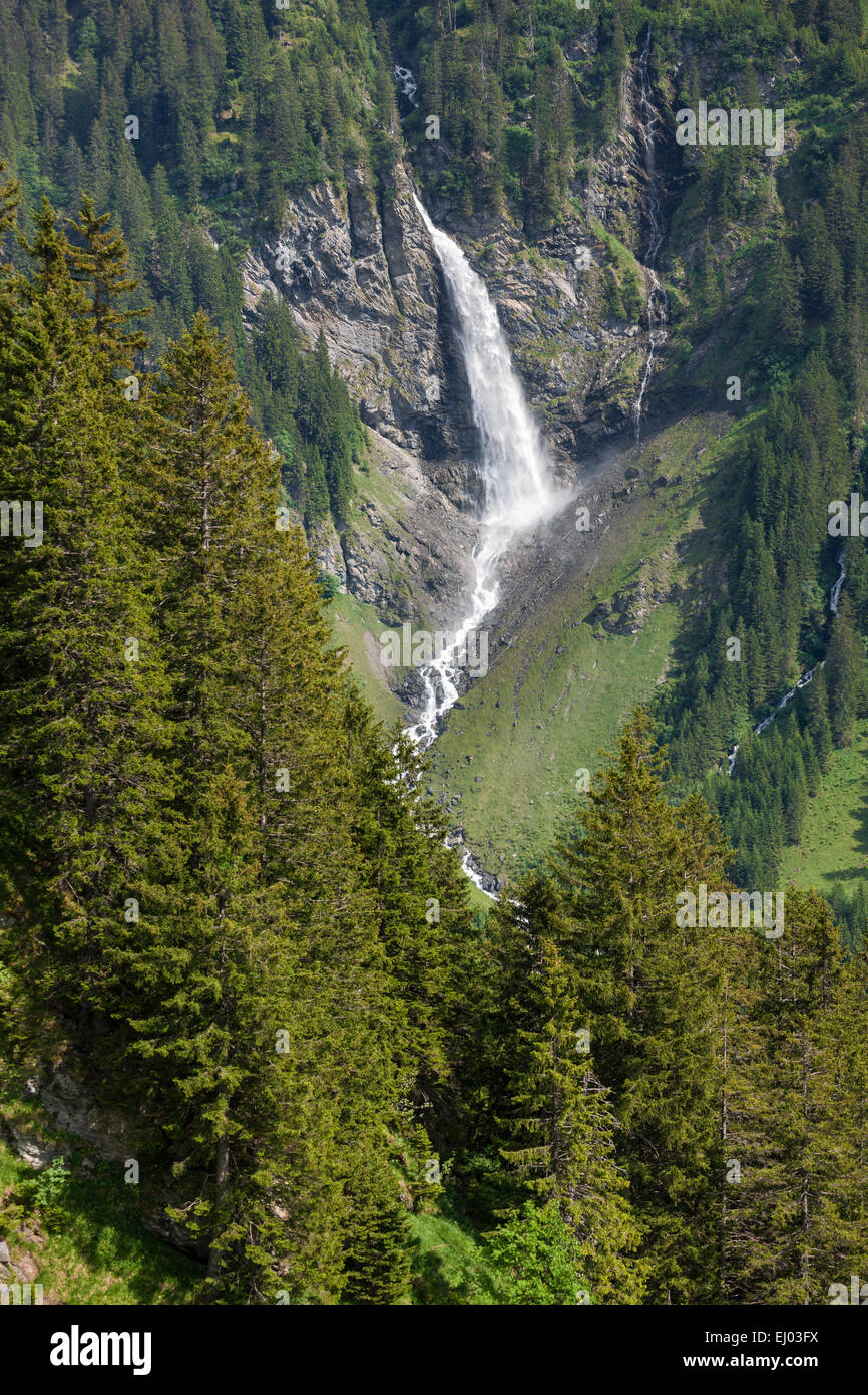 To dust waterfall, Switzerland, Europe, canton, Uri, valley of schachen - Stock Image