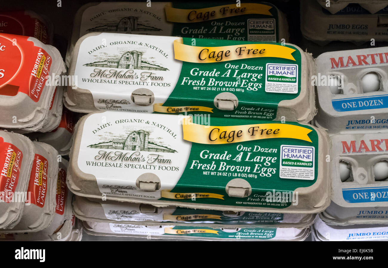 cage-free-grade-a-large-fresh-brown-eggs