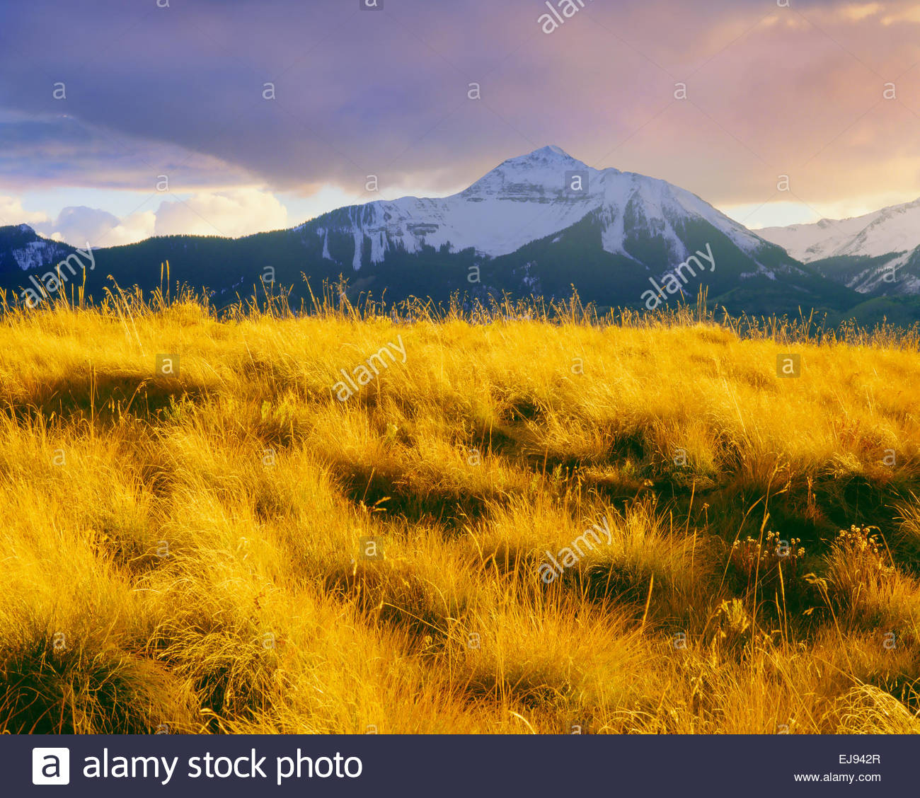 'Sunshine Mountain' autumn 'San Juan Mountains'  'Uncompahgre National Forest' Colorado - Stock Image