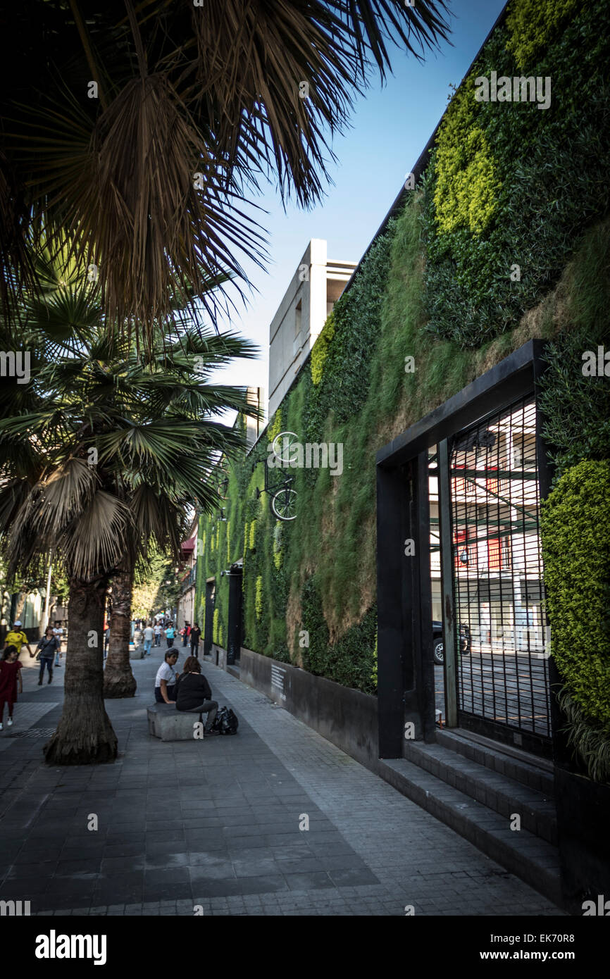 contemporary architecture building with a vertical garden in Mexico City Downtown - Stock Image