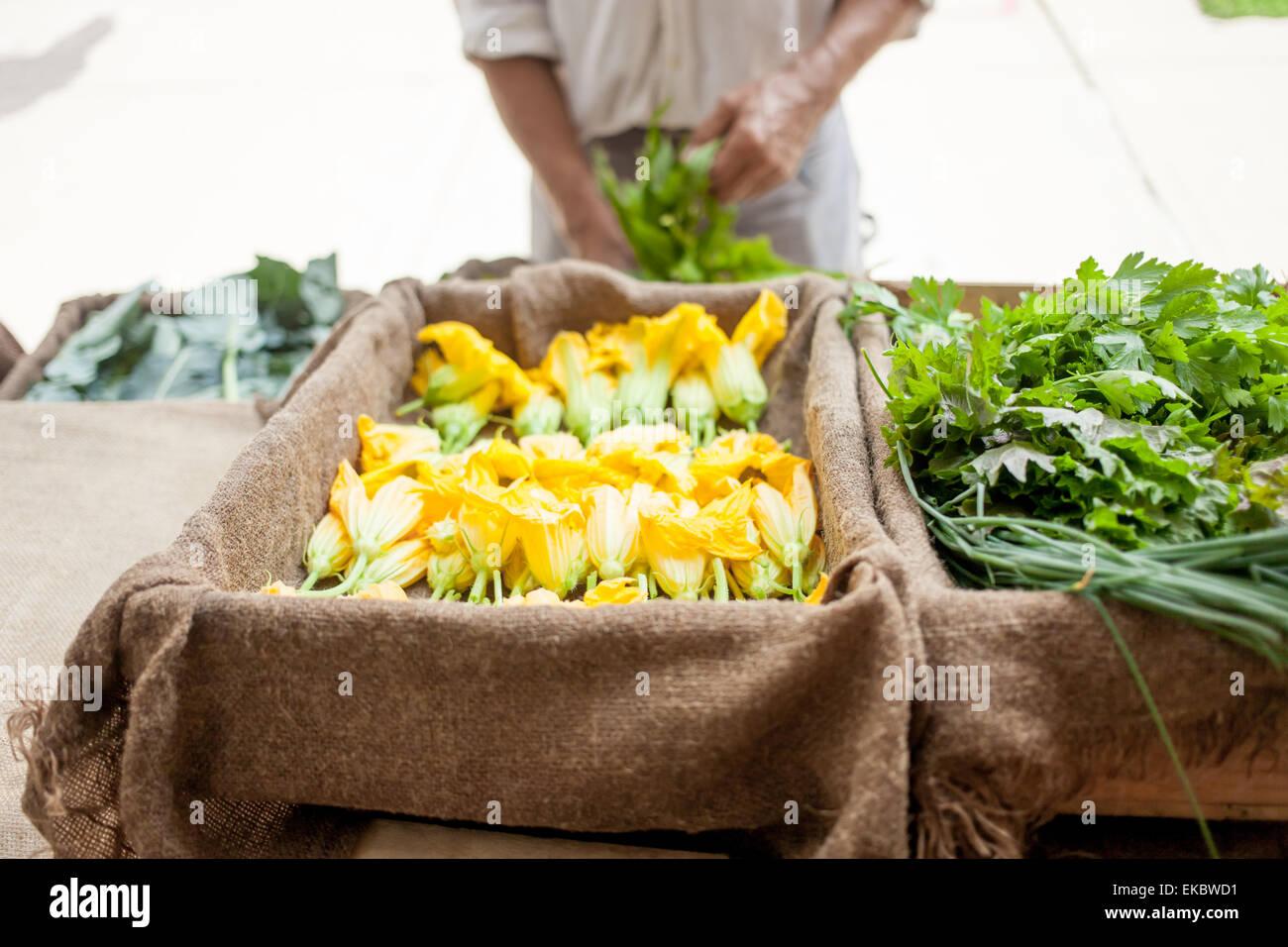 Farmer selling organic vegetables on stall - Stock Image