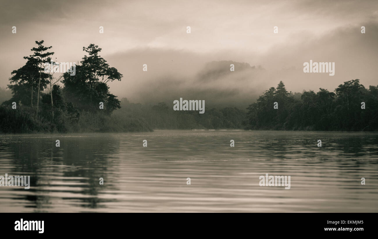 foggy-morning-on-the-kinabatangan-river-borneo-malaysia-EKMJM5.jpg