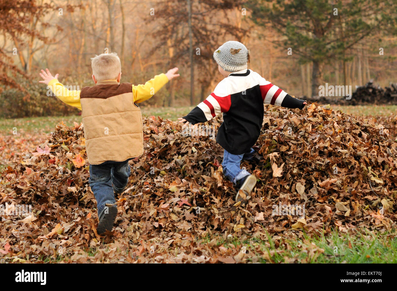Two boys jump in Fall leaf pile - Stock Image