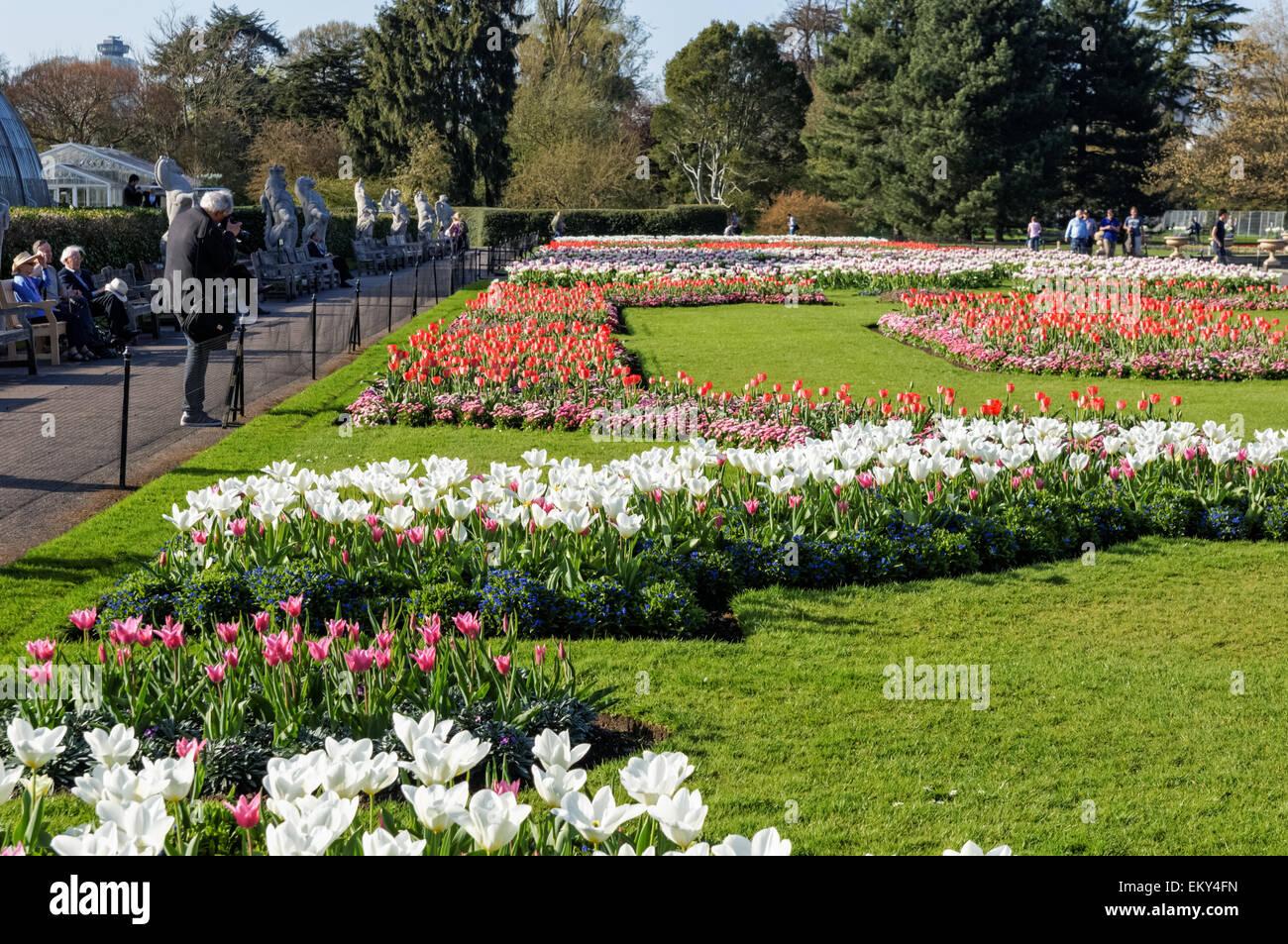 People enjoying sunny weather in the Royal Botanic Gardens, Kew ...