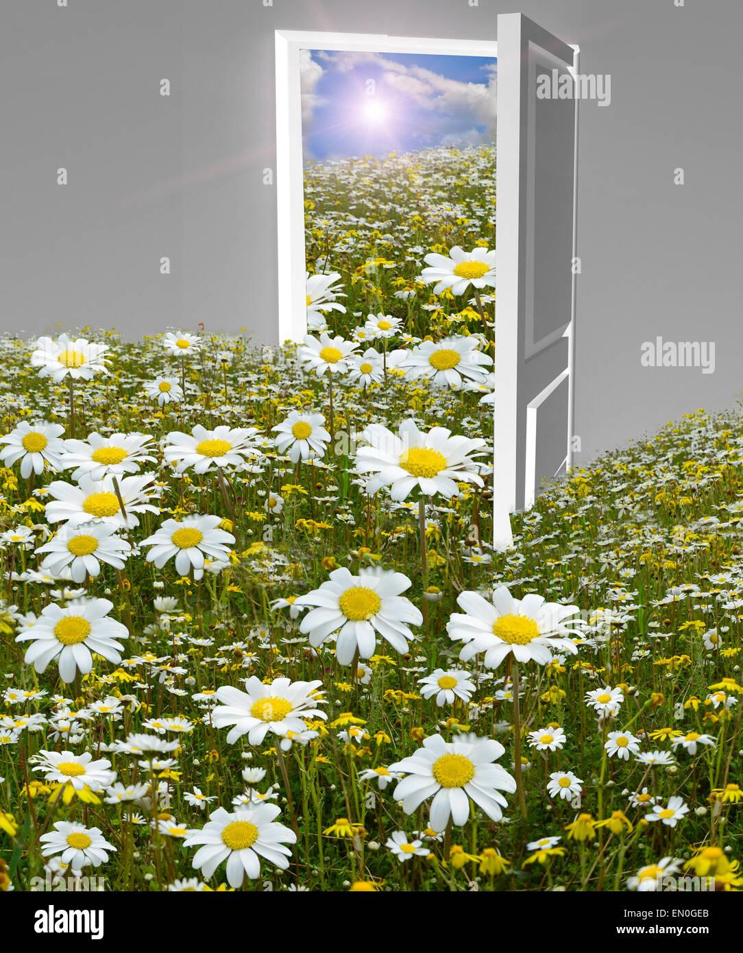 Spring background open door and flowers daisies flow out of it spring background open door and flowers daisies flow out of it izmirmasajfo Gallery
