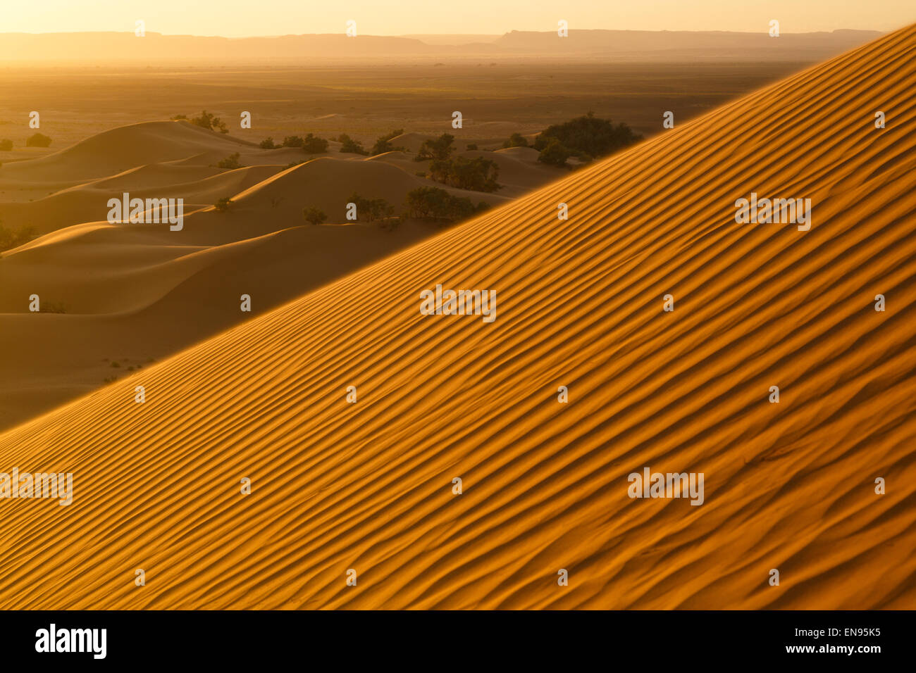 Sand dunes. Lihoudi dunes. Sahara desert. Morocco. - Stock Image