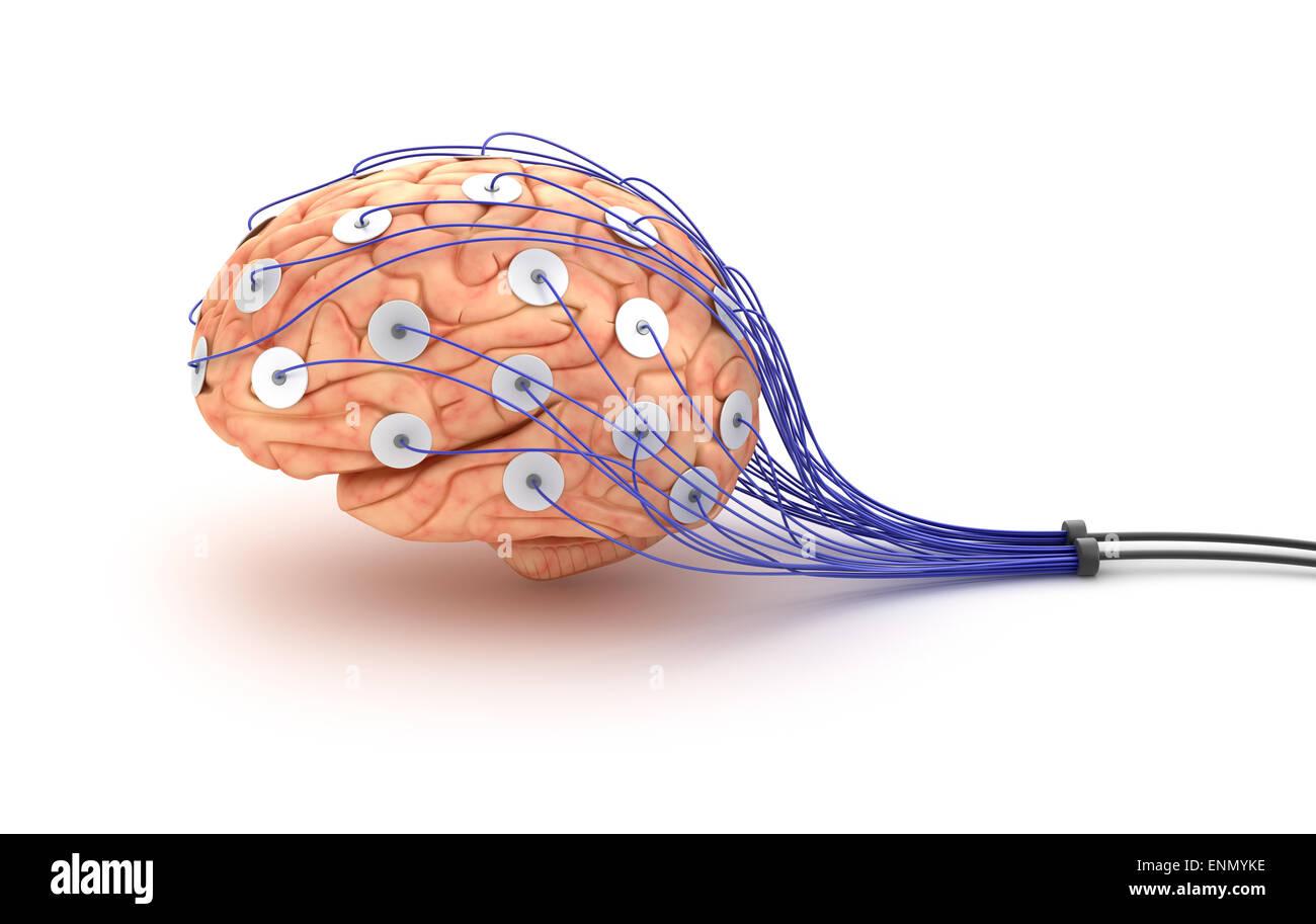 Brain analysis. Polygraph test Stock Photo: 82210002 - Alamy