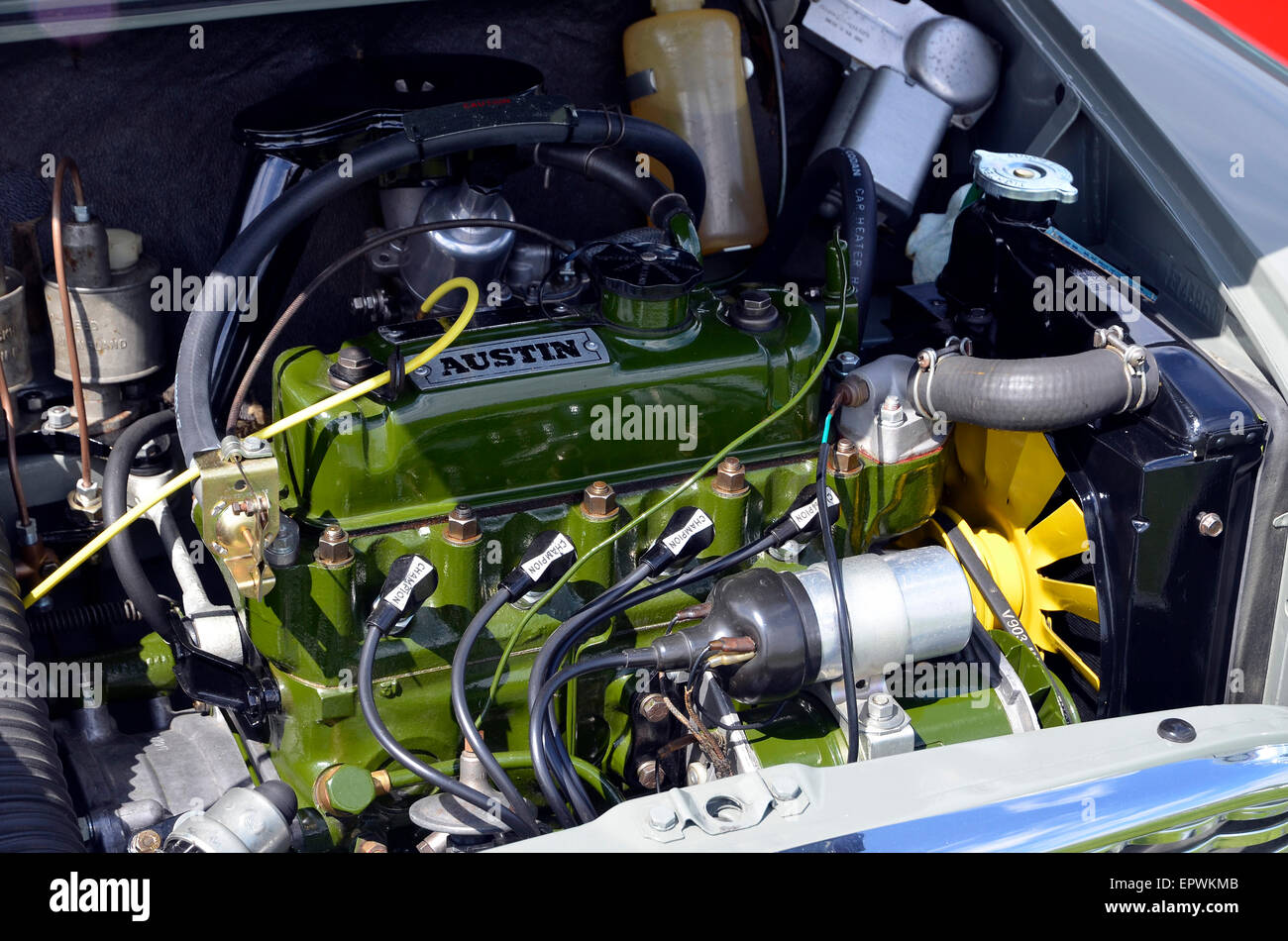An immaculate Austin badged BMC A-series engine in a classic Mini - Stock Image