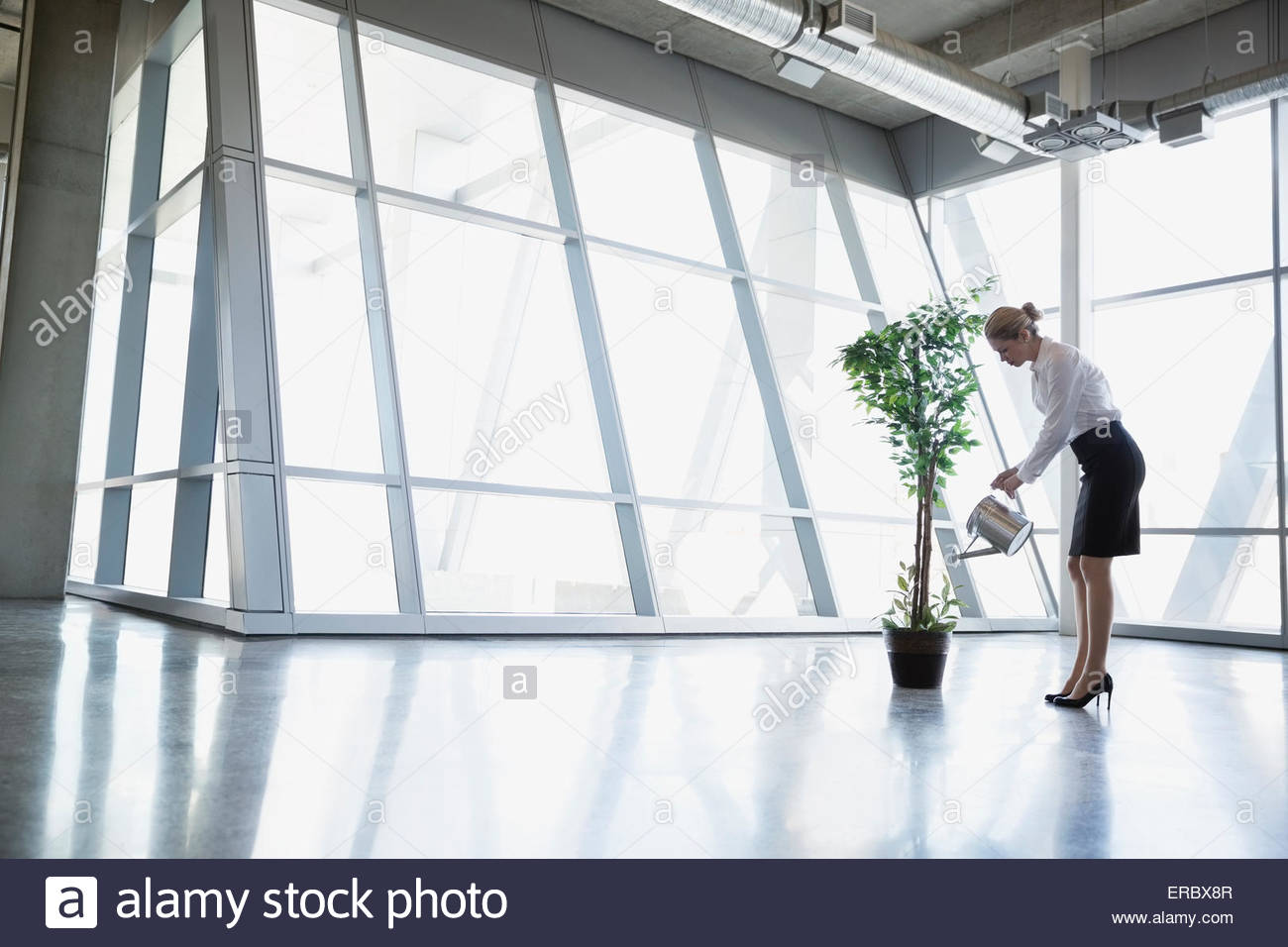 Businesswoman watering potted tree in modern office - Stock Image