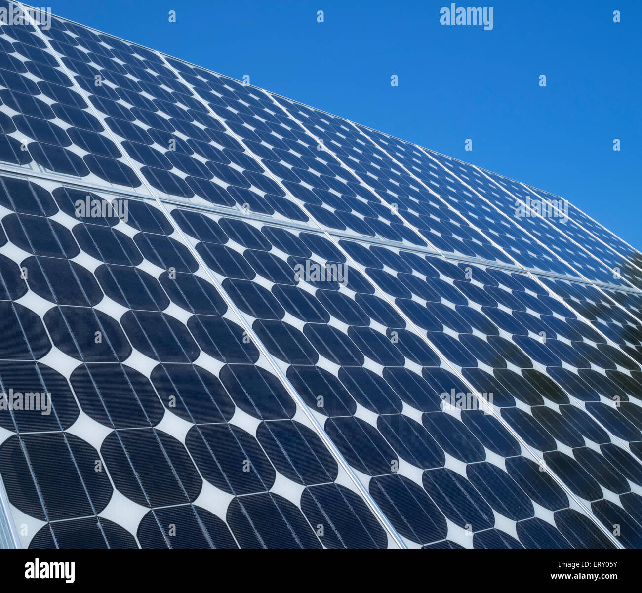 solar-panel-photovoltaic-cells-array-close-up-blue-sky-copy-space-ERY05Y.jpg
