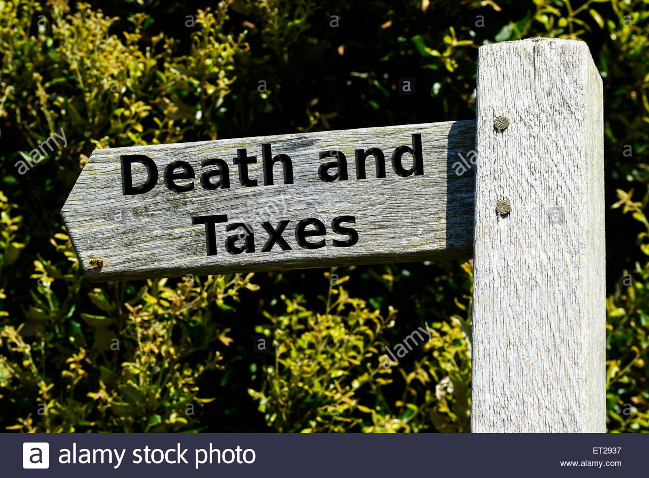 Signposting the inevitable, England UK - Stock Image