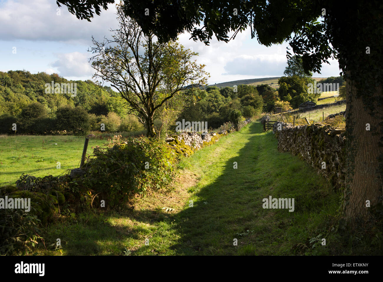 UK, England, Derbyshire, Eyam, old green lane to Cucklet Delf used for plague period services - Stock Image