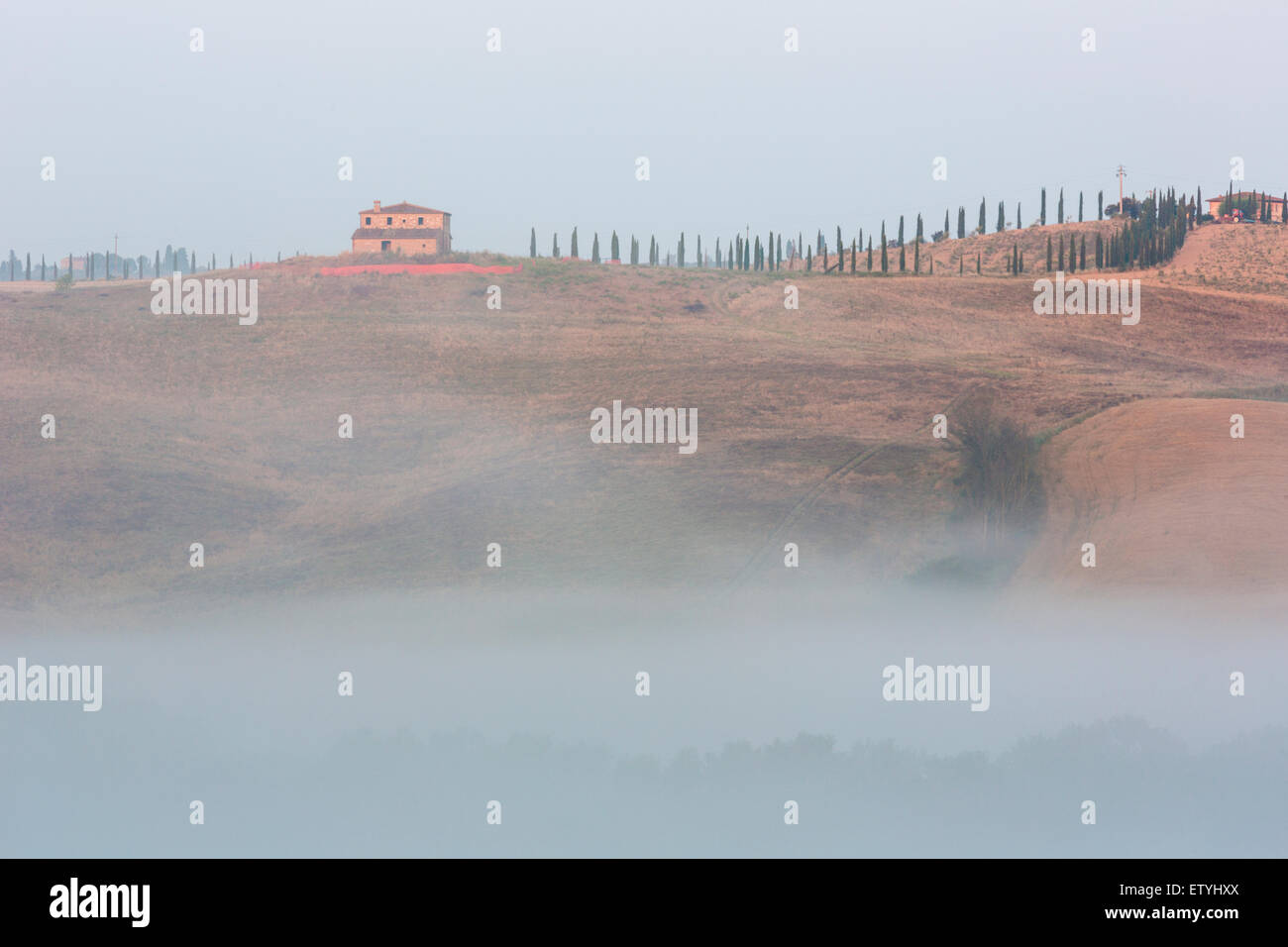 View over agricultural landscape in Val d'Chiana in Tuscany, Italy - Stock Image