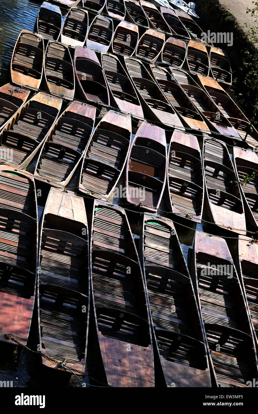 Tied up wooden river punts on a river in Oxford Great Britain - Stock Image