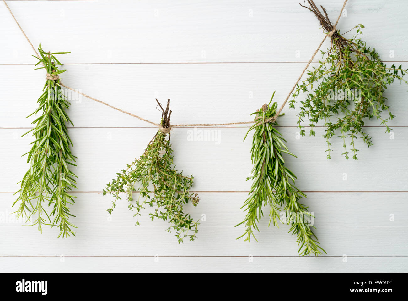 Single twigs of Thyme and Rosemary on Wooden Board. - Stock Image