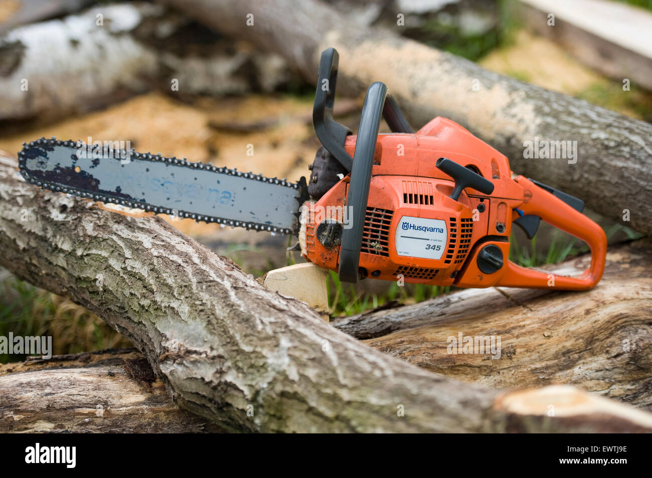 Used Husqvarna 345 chainsaw set down on a pile of cut logs after felling  and cutting trees. Photography by Becky Matthews