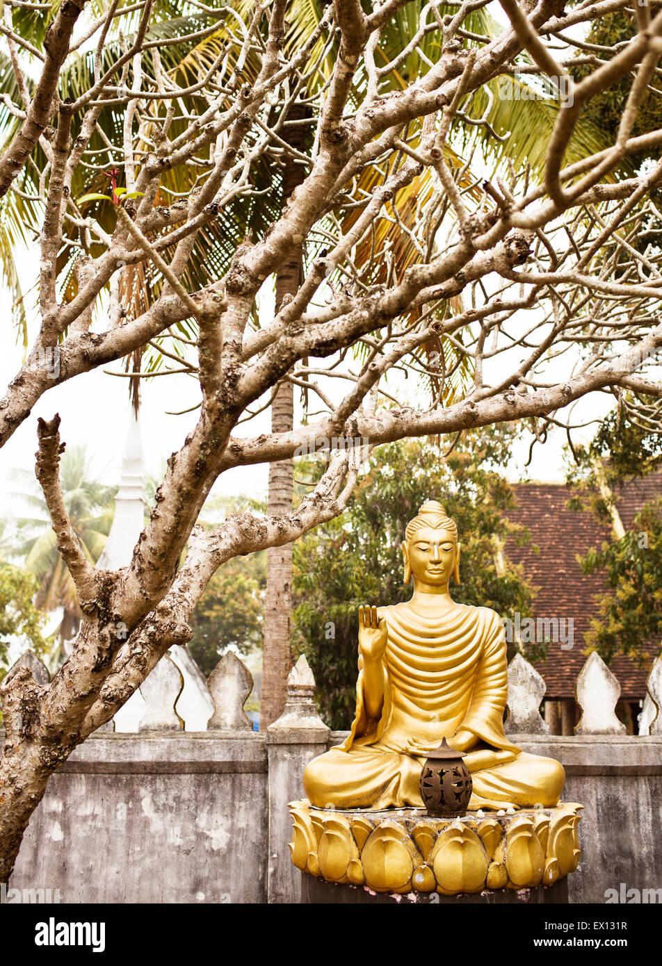 A garden of Buddhas inside Wat Choumkhong. The Buddhas show some of the 7 positions of Buddha.Luang Prabang,Laos - Stock Image