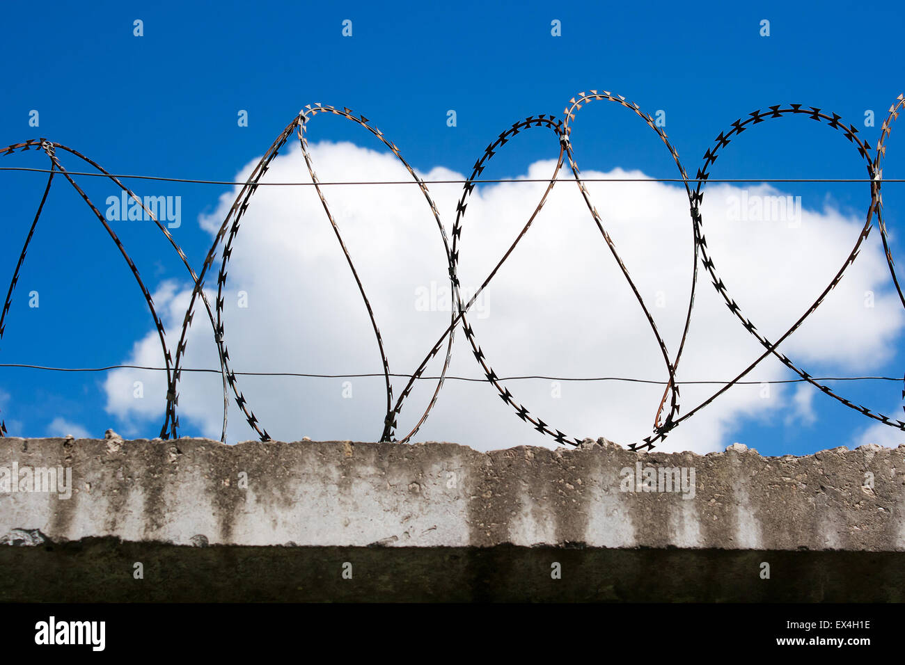 Awesome Barbed Wire Bra Ideas - Electrical Diagram Ideas - itseo.info