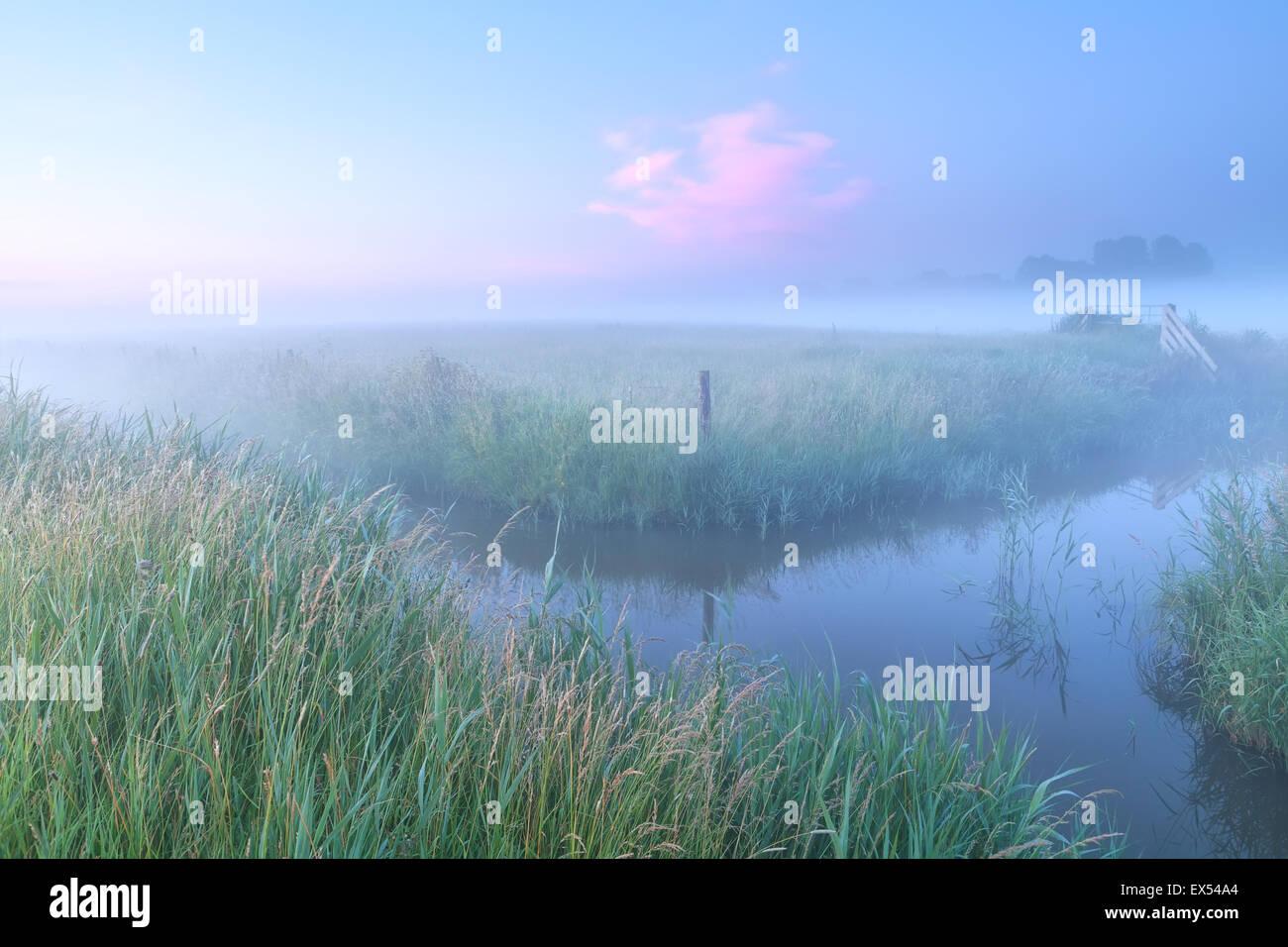 Dutch farmland with river in foggy sunrise - Stock Image