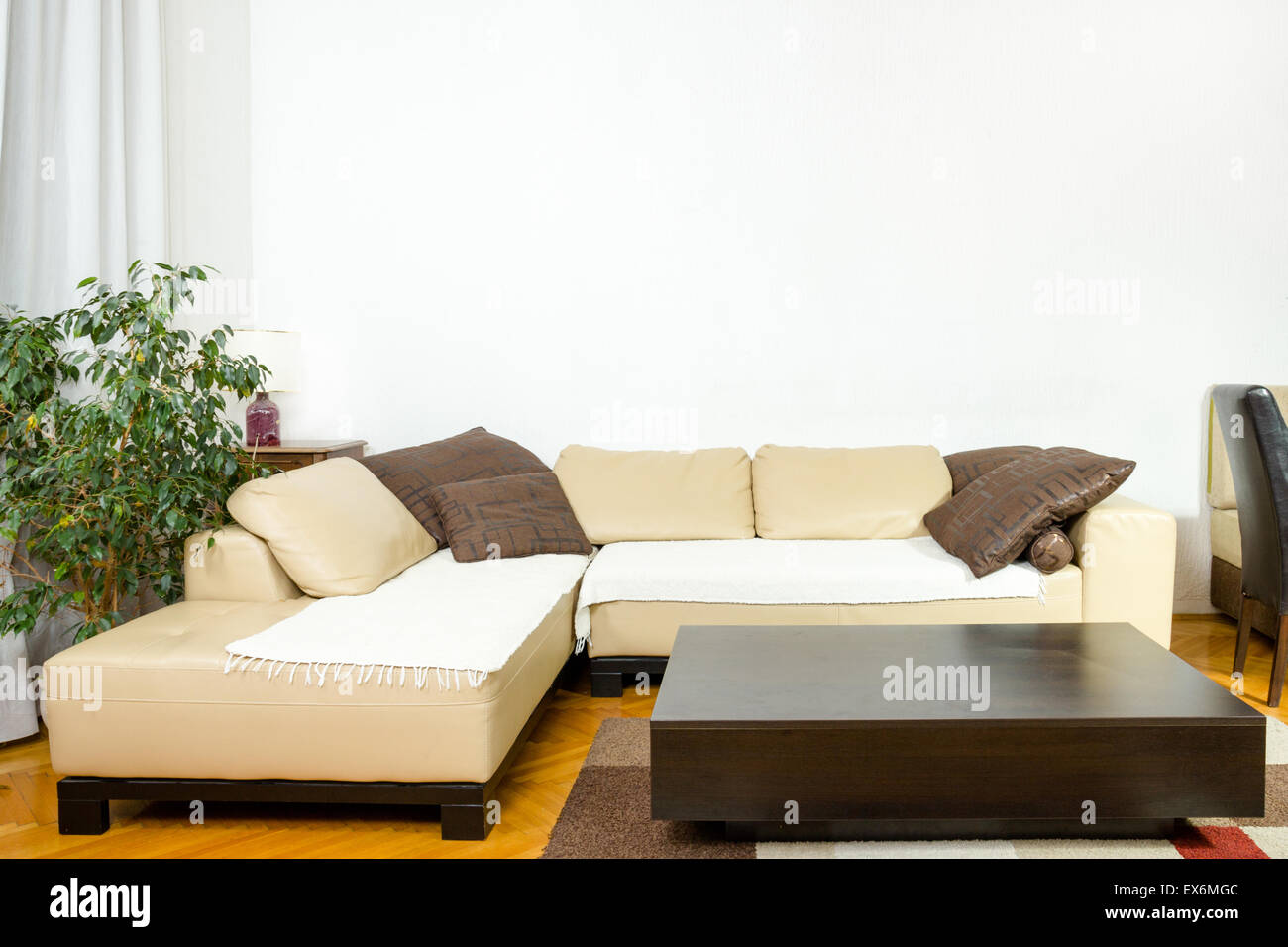 Dinner Sofa empty living room with angular sofa dinner wagon plant curtains