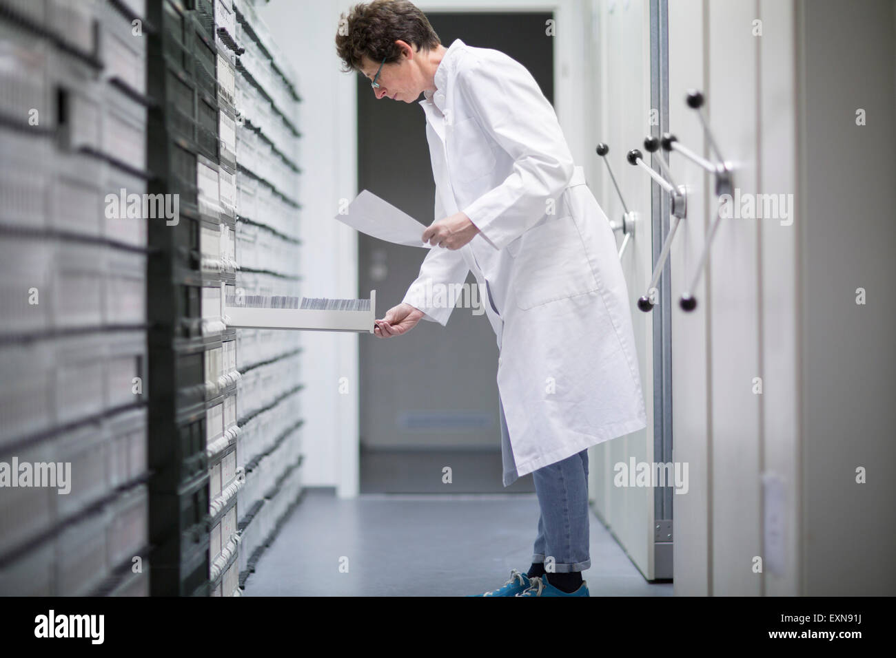 Laboratory assistant in sample archive of clinical laboratory - Stock Image