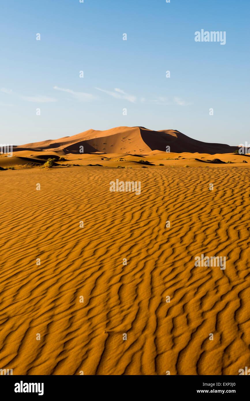Sand dunes in morning light, Merzouga, Meknès-Tafilalet Region, Morocco - Stock Image