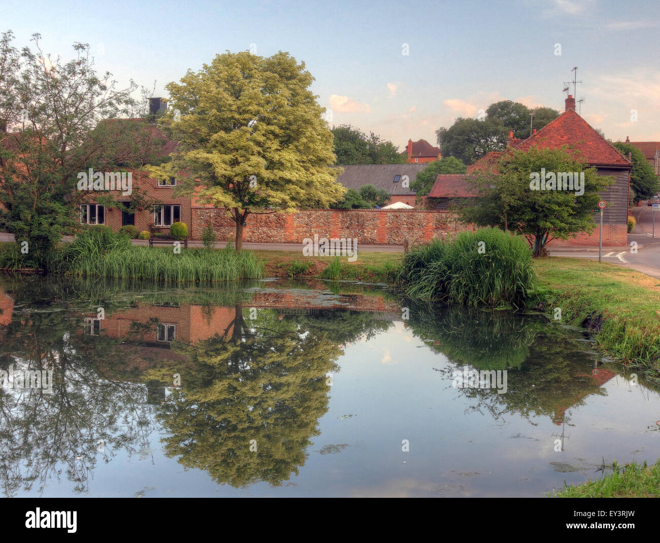 Berks,west,reflection,tree,trees,summer,picnic,the,pond,east,Ilsley,West,ilsley,Berkshire,village,town,English,British,GB,Great,Britain,Great Britain,GoTonySmith,Buy Pictures of,Buy Images Of