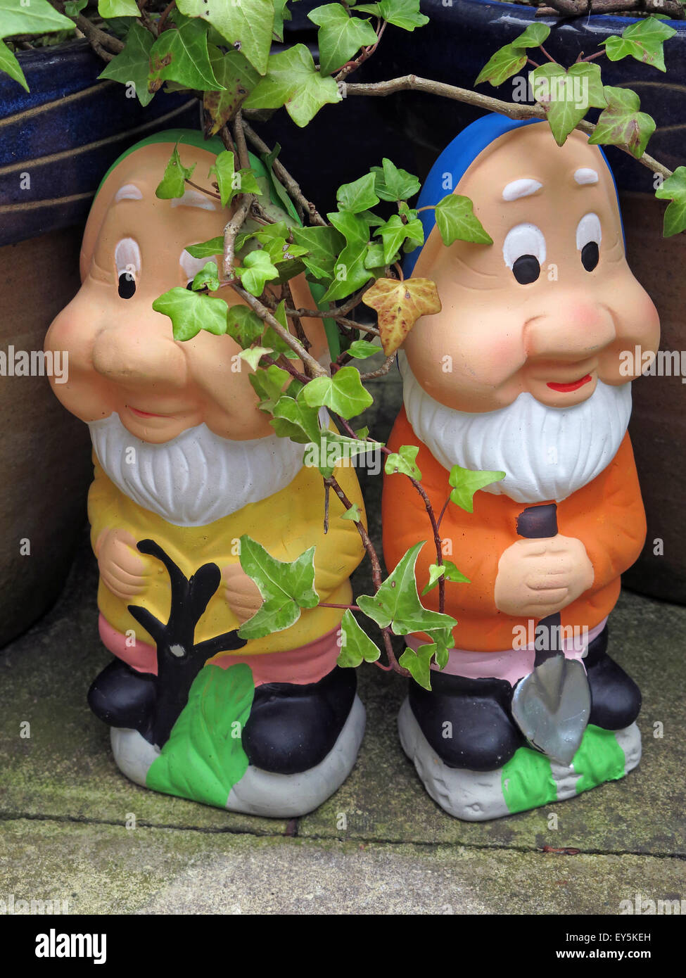 Two comical,with,ivy,comedy,funny,vulgar,plants,spade,hat,fool,foolish,ornament,world,garden Gnomes,Gardeners World,GoTonySmith,Buy Pictures of,Buy Images Of
