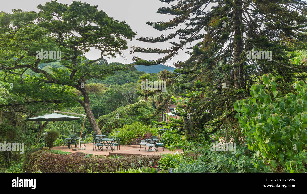 Tables set in a beautiful garden with gigantic trees in the the Mountains - Stock Image