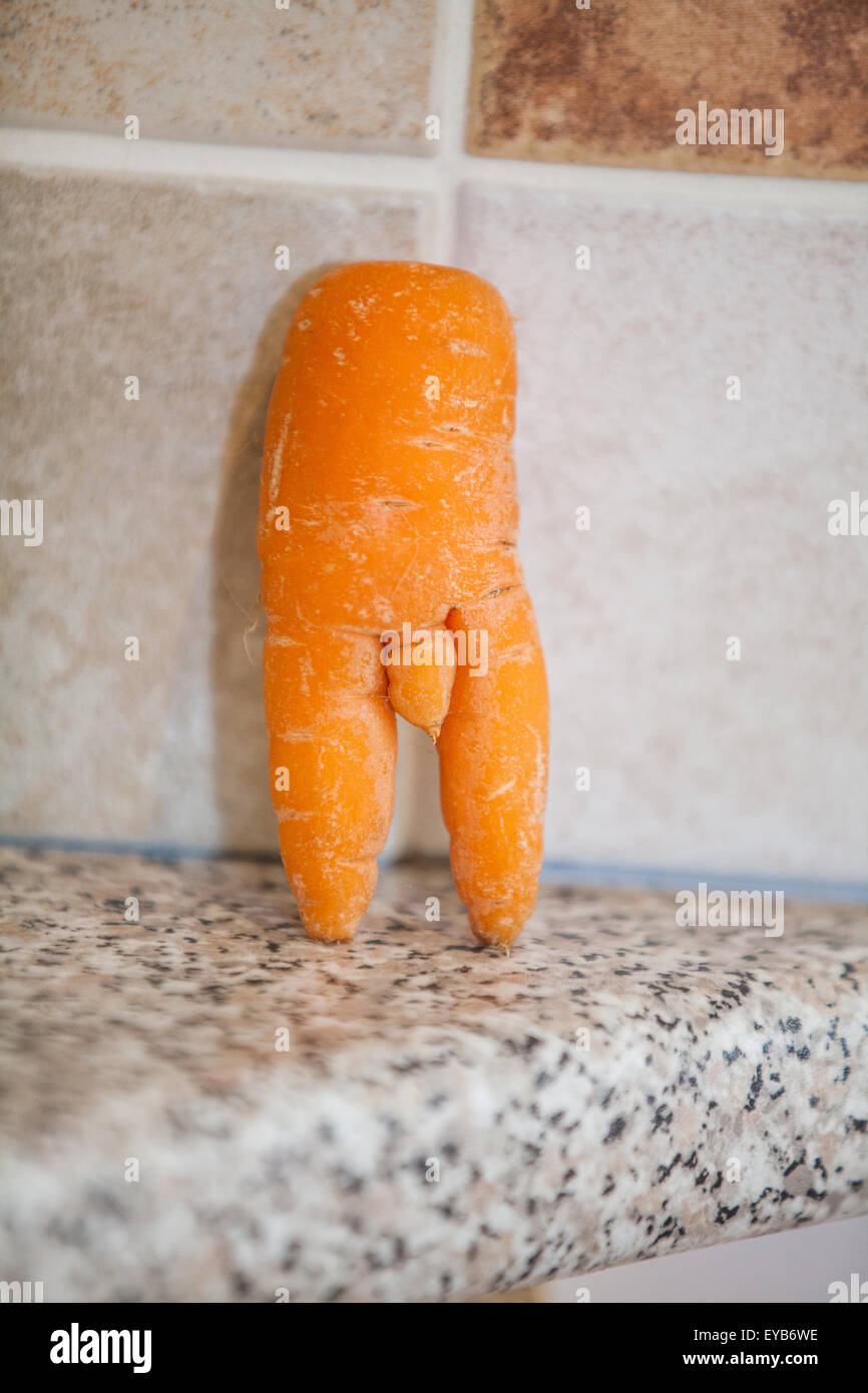 a-rude-shaped-carrot-that-in-its-natural