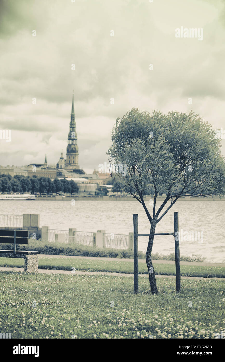 Stylized landscape of St. Peter in Riga by the river and a young tree in the wind on the waterfront - Stock Image