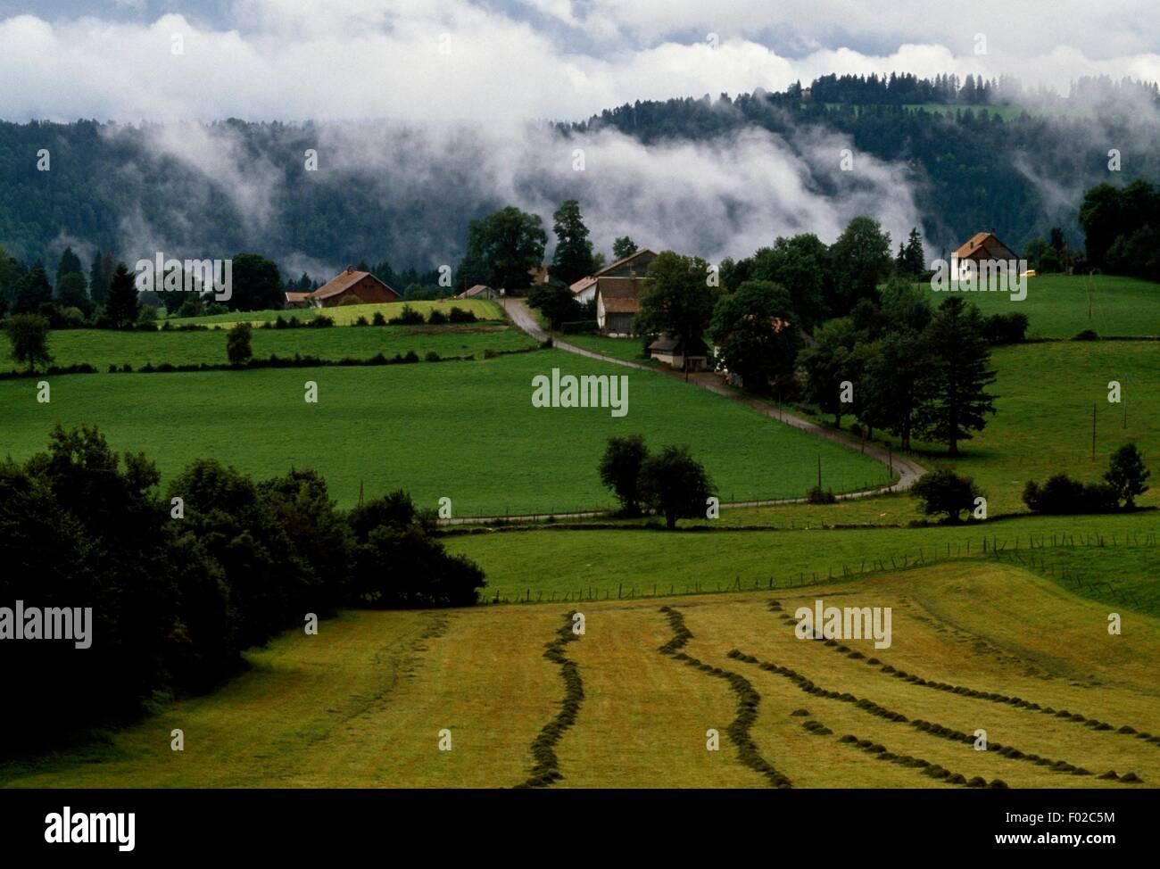 Landscape, Doubs Valley, Jura Mountains Regional Natural Park (Parc naturel regional du Haut-Jura), France. - Stock Image